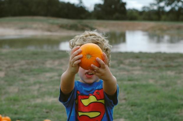 pumpkins-21